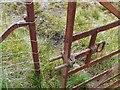 NO0548 : Unusual gate latch by Gordon Brown