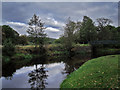 SJ9892 : River Etherow by Stephen Burton