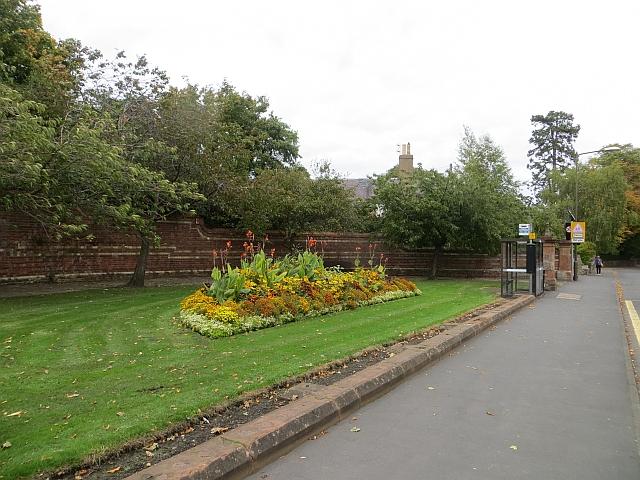 Flowerbed, Station Road