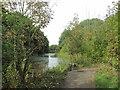 SE3506 : Barnsley Canal near the Dearne Valley Park by John Slater