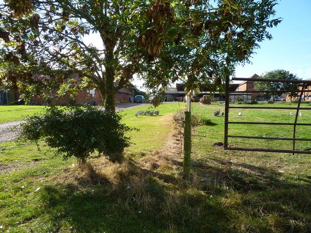 Orchard Wood Farm