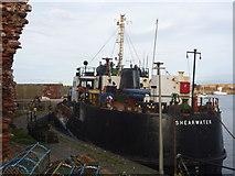 NT6779 : Coastal East Lothian : MV Shearwater At Dunbar by Richard West