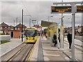 SJ9197 : Audenshaw Tram Stop by David Dixon
