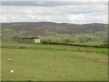 NY9398 : Moorland around High Shaw bastle by Mike Quinn