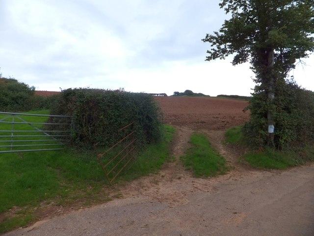 Two fields off Gore Lane