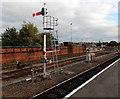 SJ4912 : Semaphore signal at the SE end of Shrewsbury railway station by Jaggery