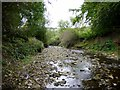 NZ0863 : Whittle Burn near its junction with River Tyne by Andrew Curtis
