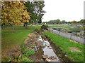 TQ2472 : Small stream in Wimbledon Park by Paul Gillett