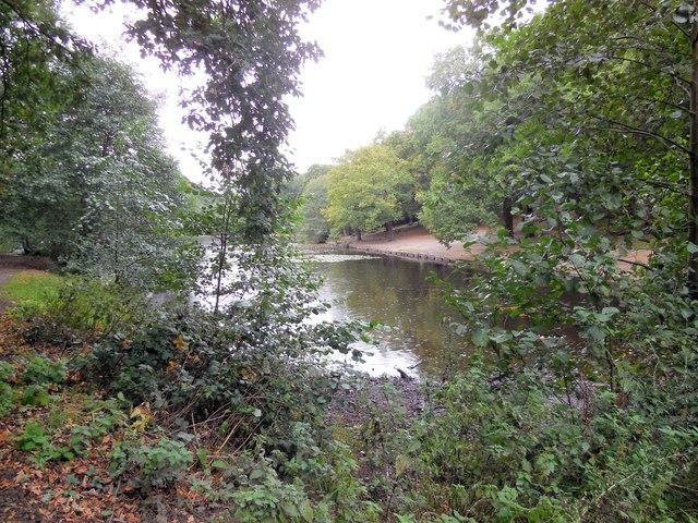 Queens Mere Pond, Wimbledon Common