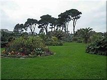 SW8031 : The sub tropical Queen Mary's gardens, Gyllyngvase Beach, Falmouth by Steve  Fareham