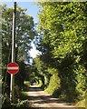 SX3860 : Lane at Notter by Derek Harper