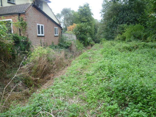 Ditch at Pickhurst Green