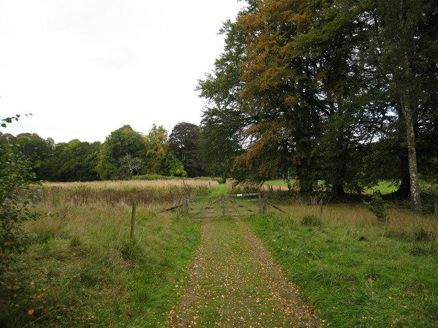 Track heading towards Burnhervie