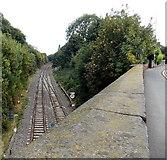 SJ6511 : Railway cutting east of King Street bridge, Wellington by Jaggery
