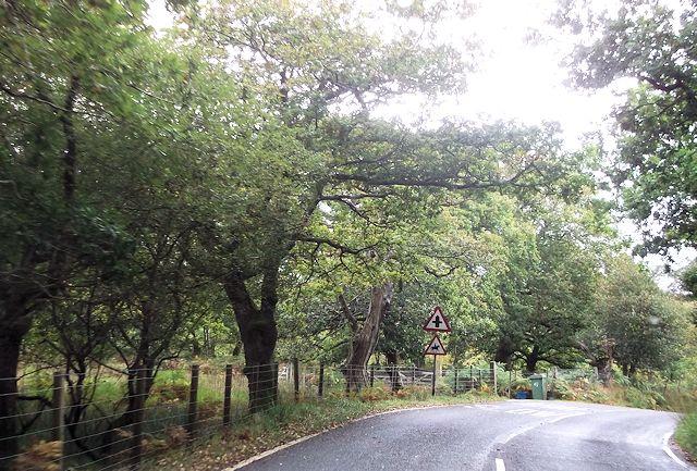 Cross roads ahead at Pont Talyrni
