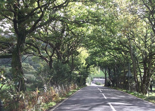 Long straight towards Tan-lan