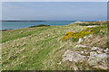 SH3393 : Cemlyn Bay by Ian Capper