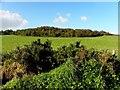 C3225 : Farragans Townland, Inch Island by Kenneth  Allen