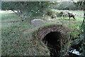 SY8087 : Brick bridge over drain on floodplain between heaths by Andrew C White