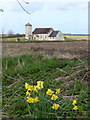 TF9532 : Parish Church & Daffodils by Des Blenkinsopp