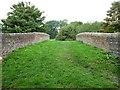 SU2063 : The crown of Heathy Close Bridge [no 107] by Christine Johnstone