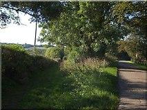 SS6611 : Footpath into Labdon Brake by David Smith