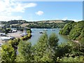 SX8853 : Noss Creek on the River Dart by Derek Voller