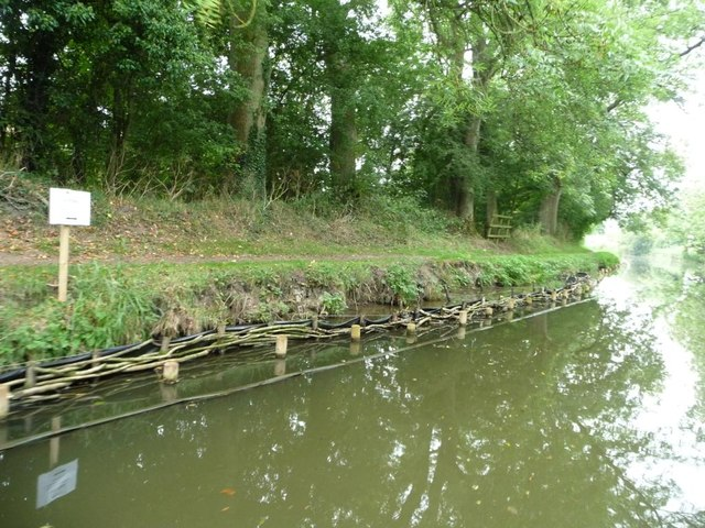 Partially repaired canal bank strengthened with wattle