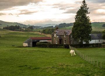 NX8685 : White horse at Whitedike by Hugh Close