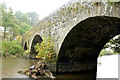J1644 : Mulligan's Bridge, The Corbet (4) by Albert Bridge