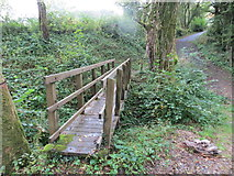 SS6644 : Footbridge over stream near Rowley Cross by Peter Wood