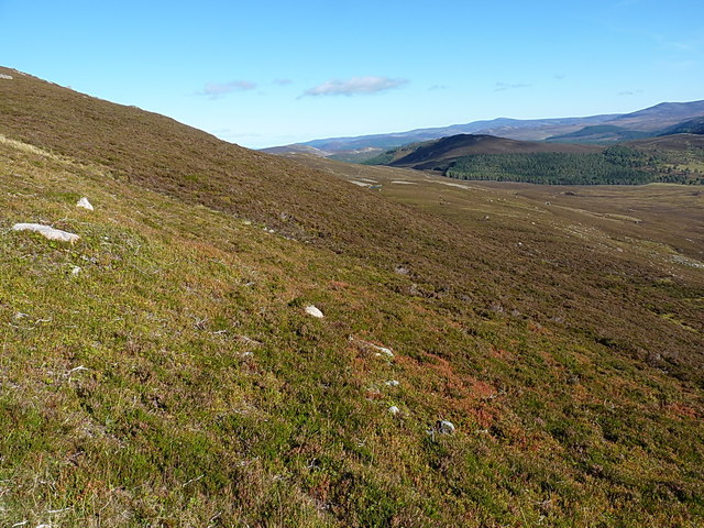 Across the steep southern slope of Meikle Elrick