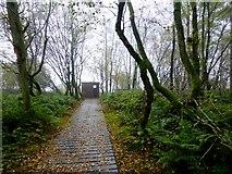 H5776 : Bird watcher's hut, Altdrumman by Kenneth  Allen