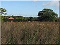 TL5448 : Hildersham to Wadlow by John Sutton