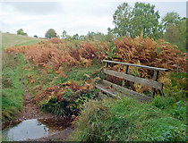 NH6762 : Ford and footbridge at Agnes Hill by Julian Paren