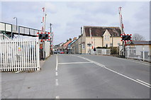 SN1916 : Level crossing in Whitland by Philip Halling