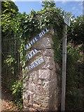SX9065 : Footpath to Chapel Hill Pleasure Grounds by Derek Harper