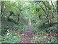SP7053 : Gayton: Former Northampton & Banbury Junction Railway trackbed by Nigel Cox