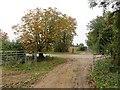 TF0204 : Racecourse Road by Richard Webb