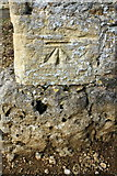 SU2489 : Benchmark on St Andrew's Church by Roger Templeman