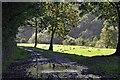 SO5716 : Wye Valley Walk by Stuart Wilding
