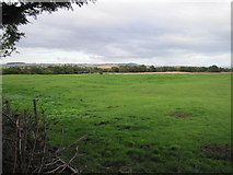NZ6917 : Site  of  the  Medieval  Settlement  at  Kilton  Thorpe by Martin Dawes