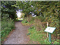 TM3863 : Footpath to Carlton Church & Information Board by Adrian Cable