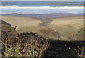 NZ8712 : Becks running into the North Sea by Pauline E
