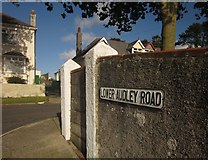 SX9065 : Lower Audley Road, Torquay by Derek Harper