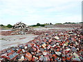 SE1019 : Site of brickworks at Blackley by Humphrey Bolton