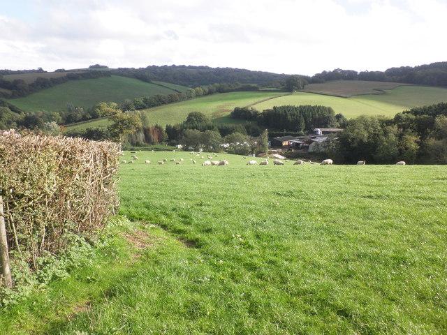 View towards Lambridge Farm