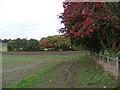 TM3863 : Footpath to Carlton Church by Adrian Cable