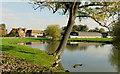 SO9040 : Pond at Moat Farm, Lower Strensham, 1 by Jonathan Billinger