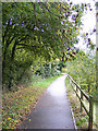 TM3763 : Footpath from Brook Farm Road by Adrian Cable
